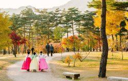 Du lịch Hàn Quốc và những điều bạn cần biết